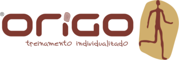 Logo Origo